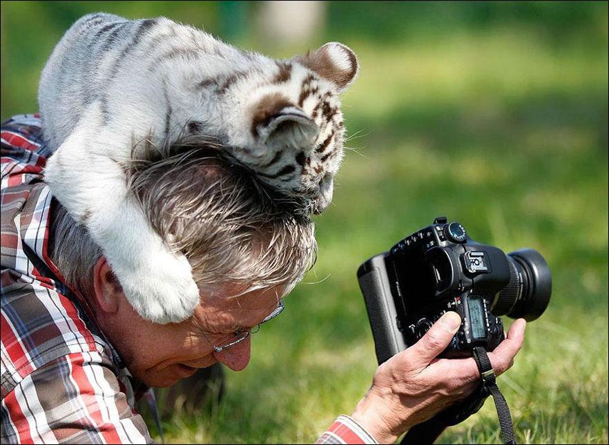 правильно выбрать сколько берут фотографы за фотку самом
