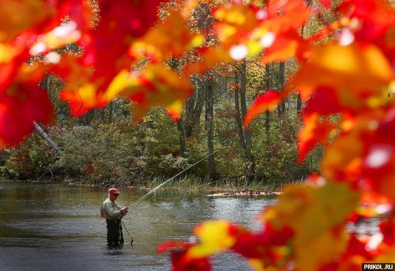 autumn-scenes-01
