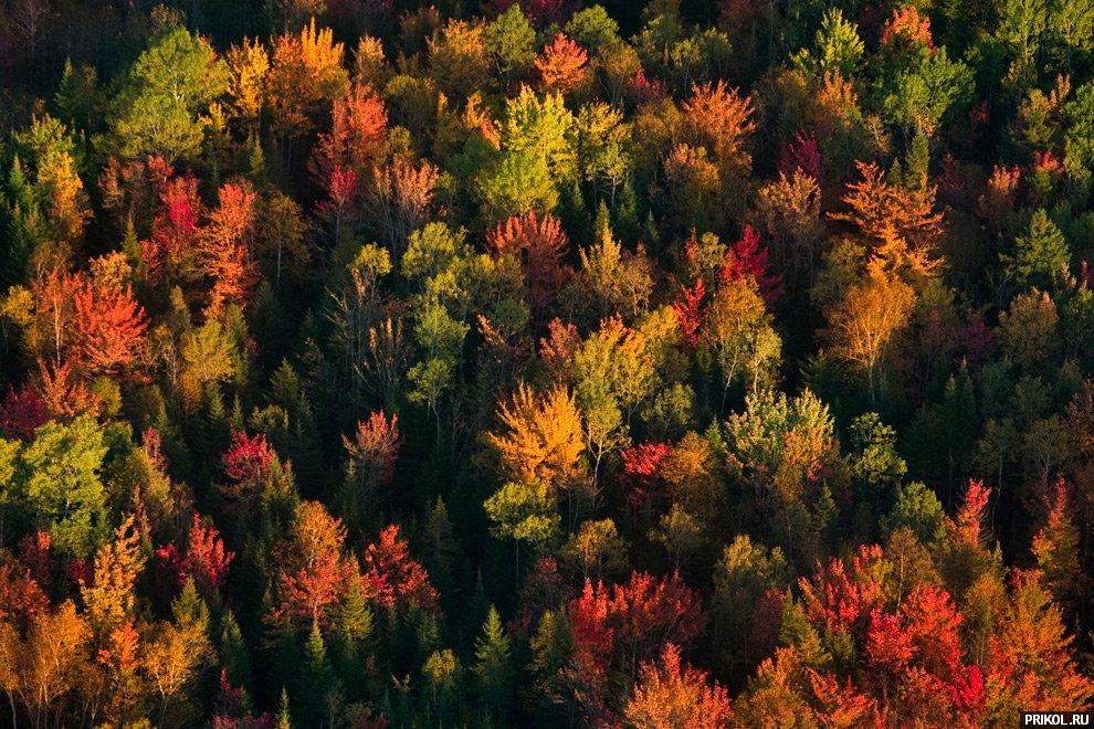 autumn-scenes-03