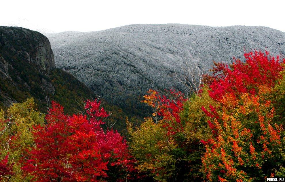 autumn-scenes-10