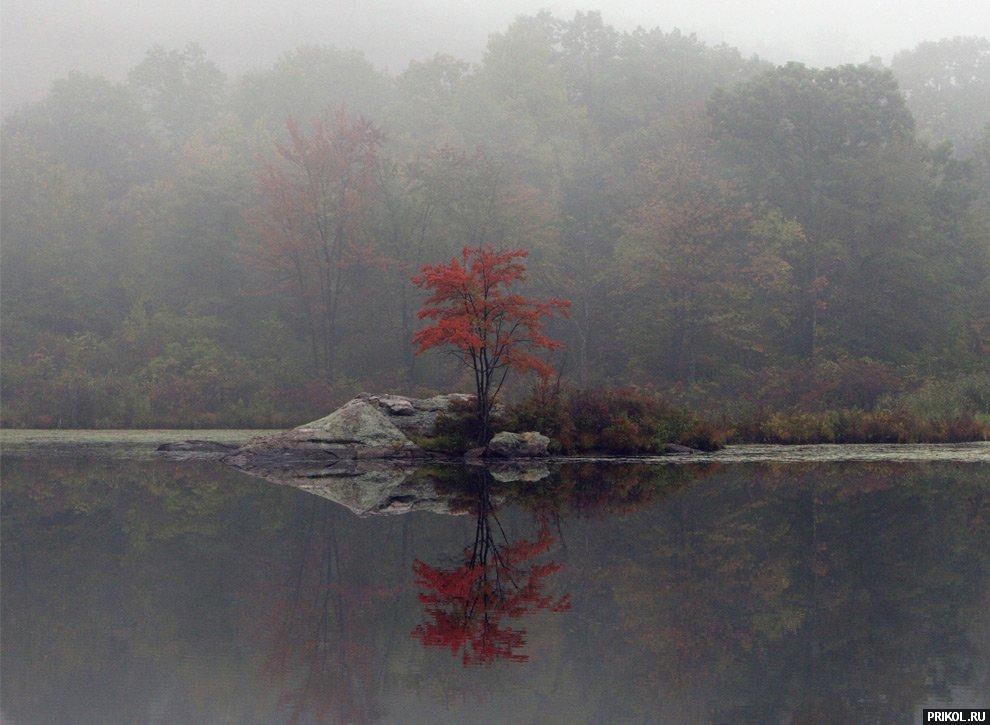 autumn-scenes-11