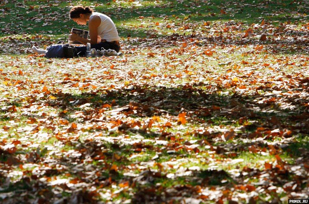 autumn-scenes-17