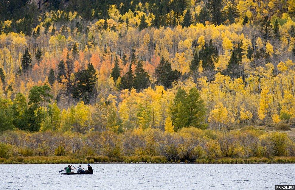 autumn-scenes-19