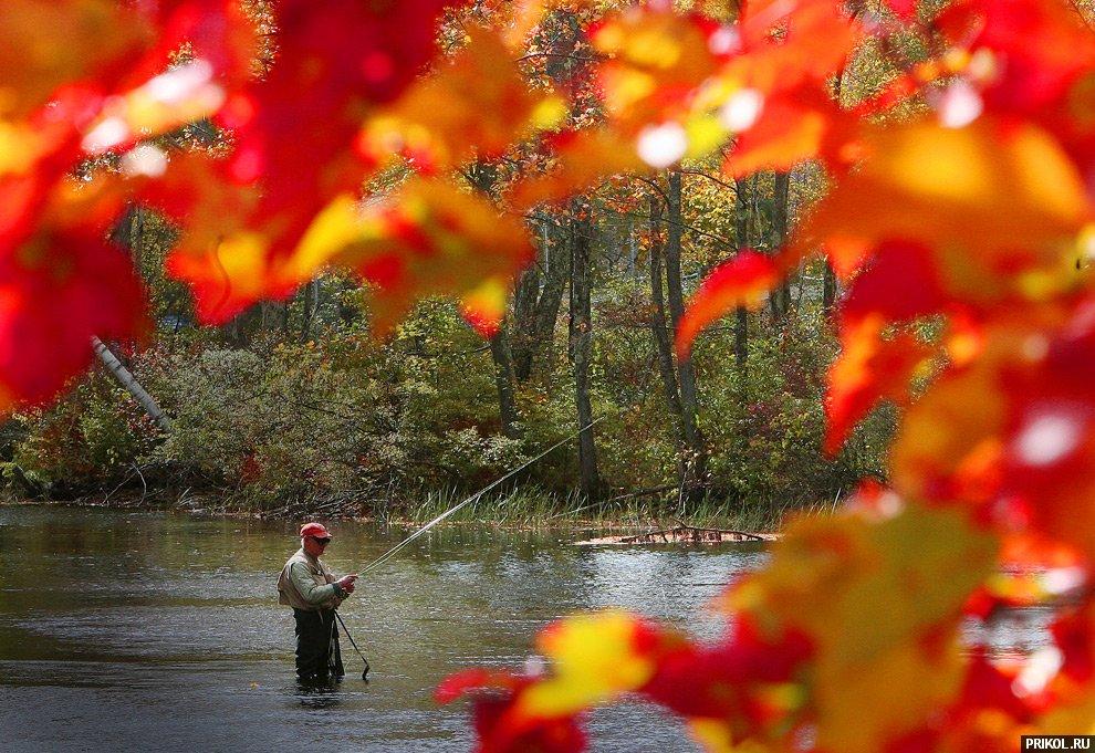 autumn-scenes-23