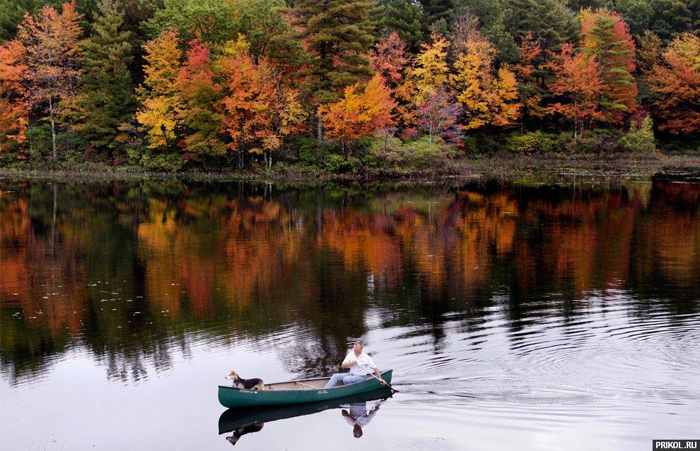 autumn-scenes-31