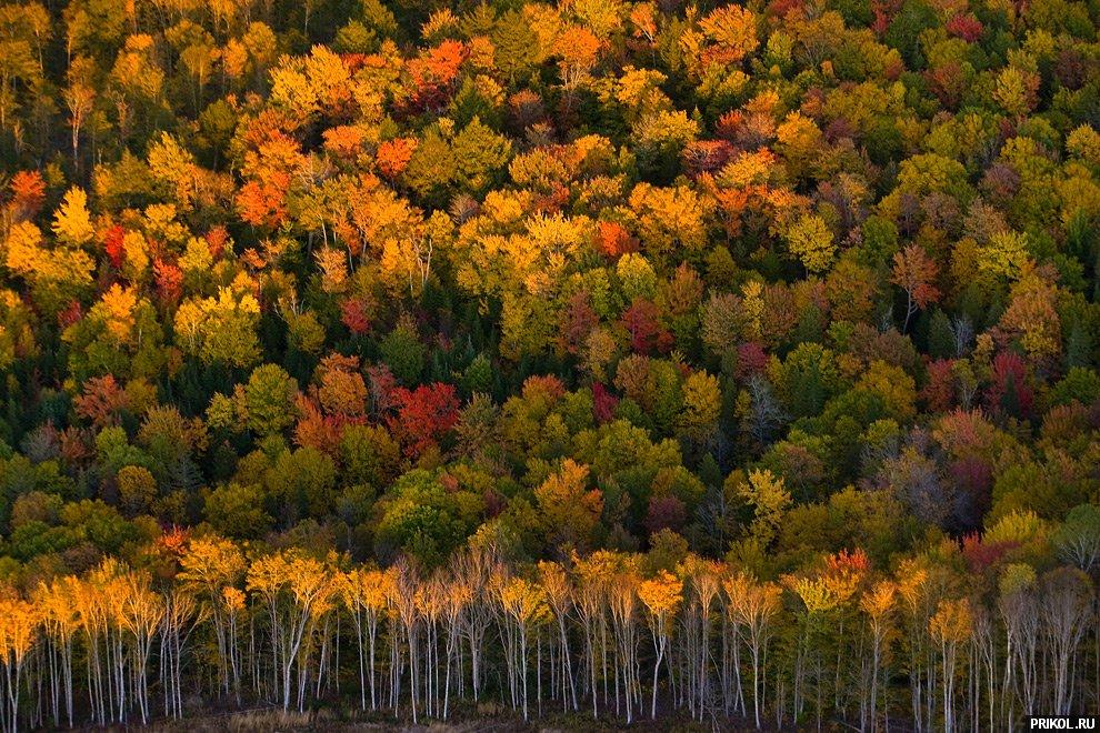 autumn-scenes-33