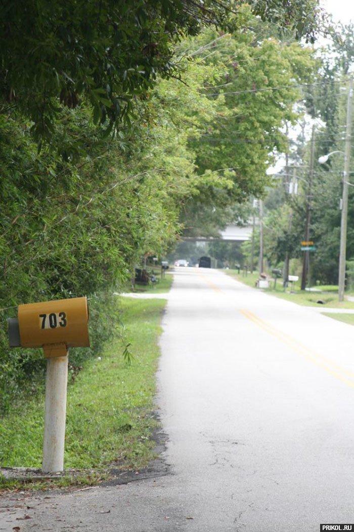 grand-cherokee-vs-mailbox-03