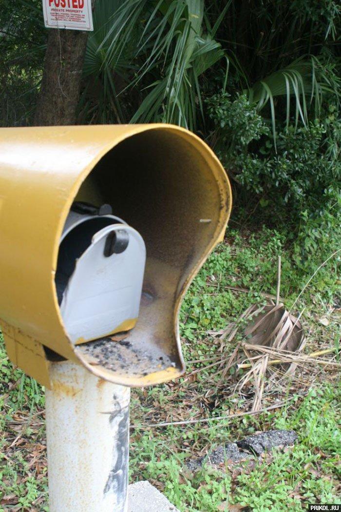 grand-cherokee-vs-mailbox-04