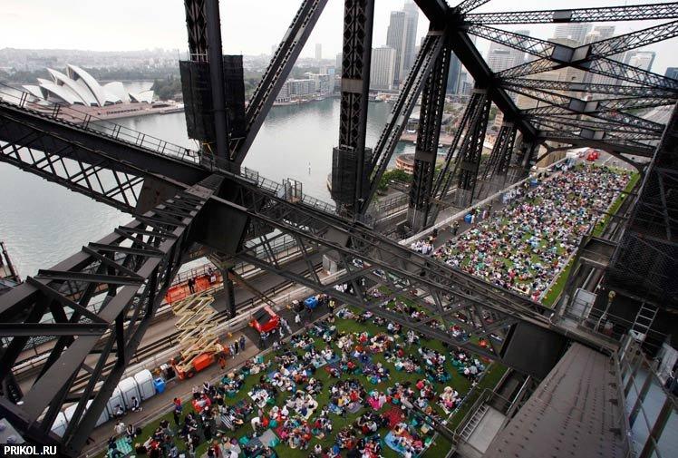 sydney-harbour-bridge-picnic-01