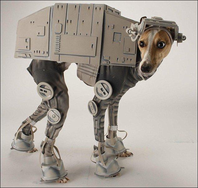 Костюм для собаки в духе Звездных Войн