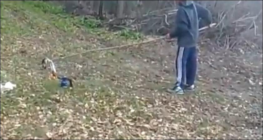 Запуск бочки