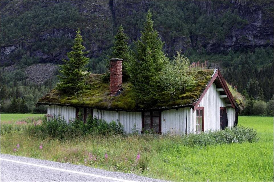 Что скрывают крыши