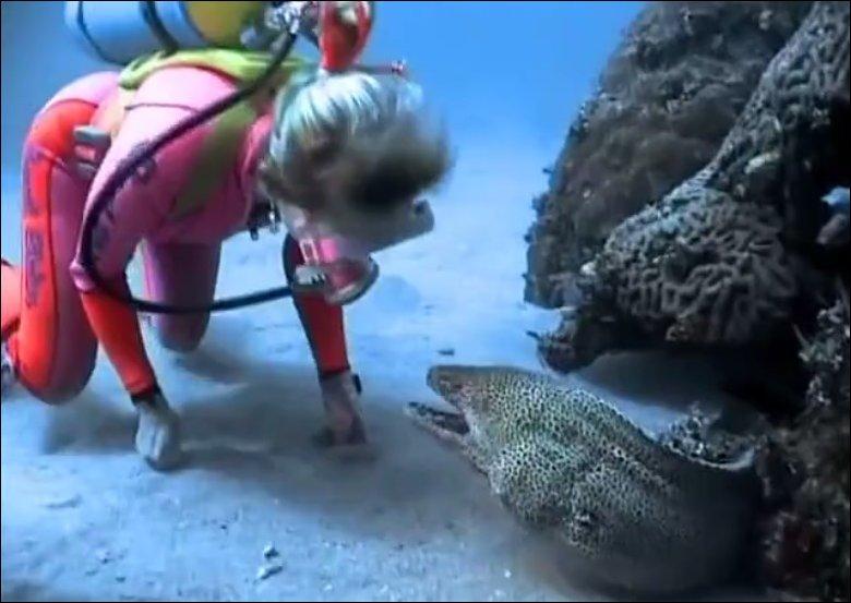Красавица и морское чудовище