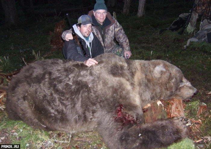 big-bear-03