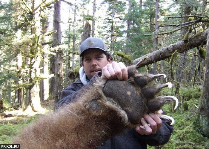 big-bear-05