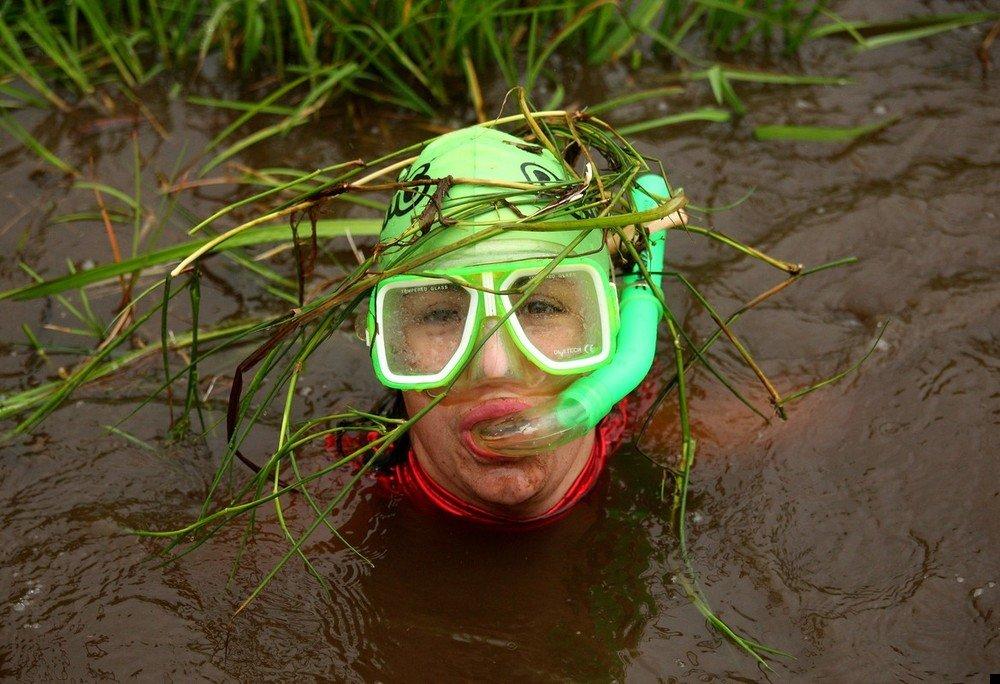 Тонет в болоте картинка