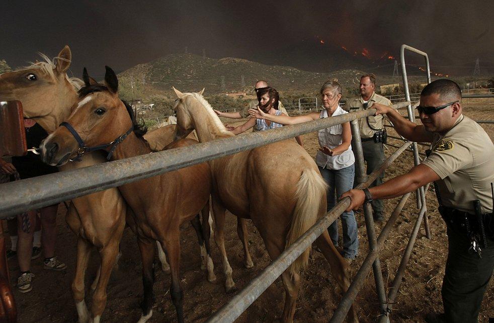 california-wildfires-10