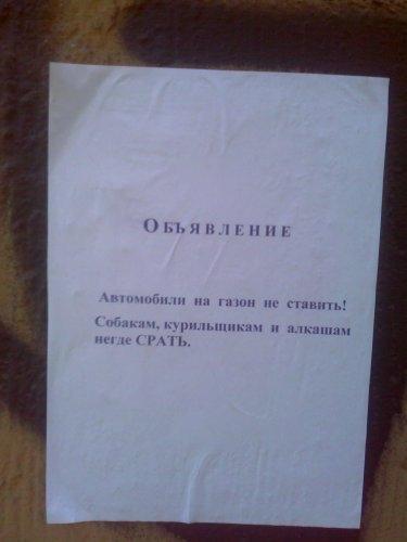 obyavleniya-11
