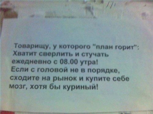 obyavleniya-29