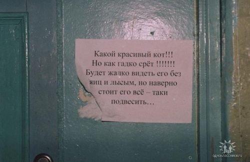 obyavleniya-32
