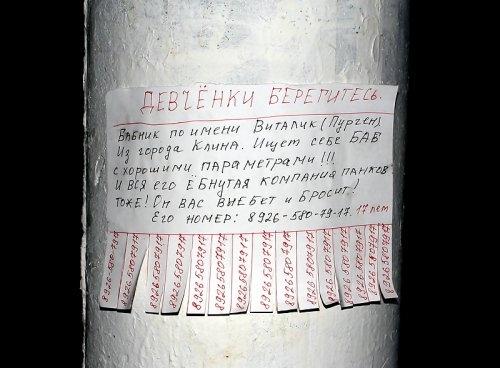 obyavleniya-50