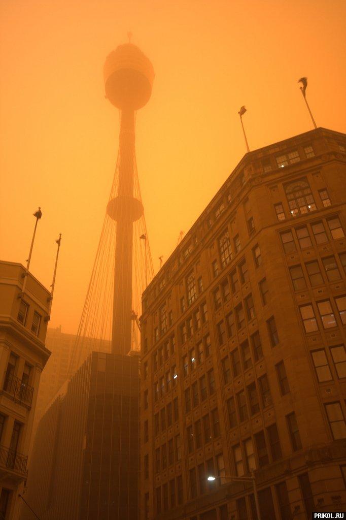 sydney-sand-storm-04