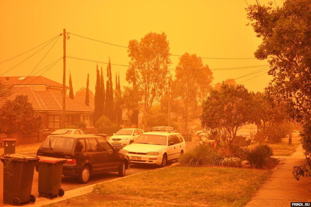 sydney-sand-storm-08