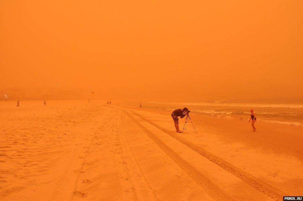 sydney-sand-storm-11