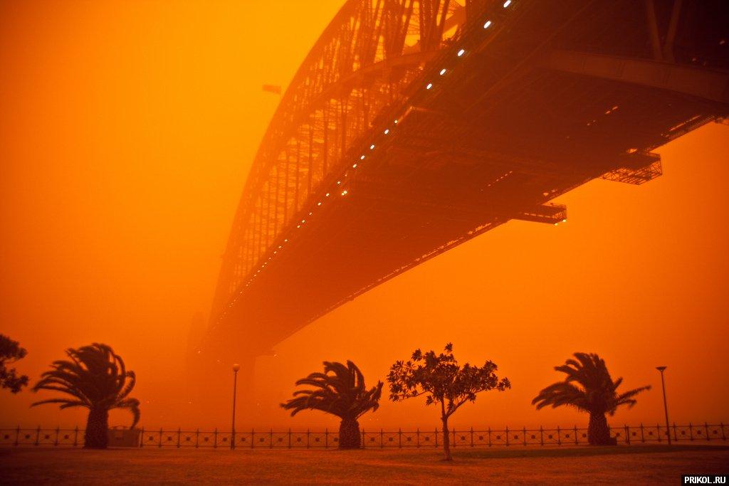 sydney-sand-storm-15