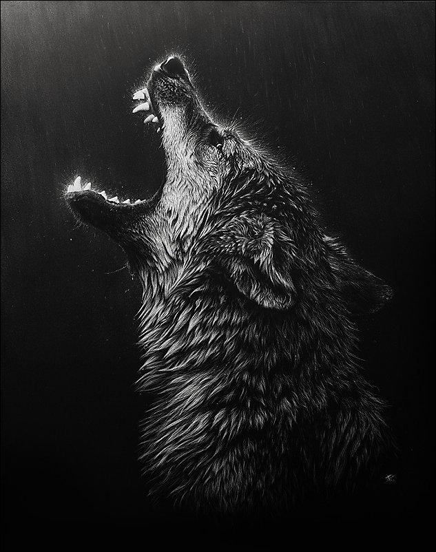 Рисунки Кристины Пенеску