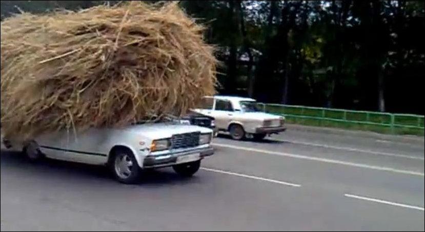 Как возят сено в Новокузнецке