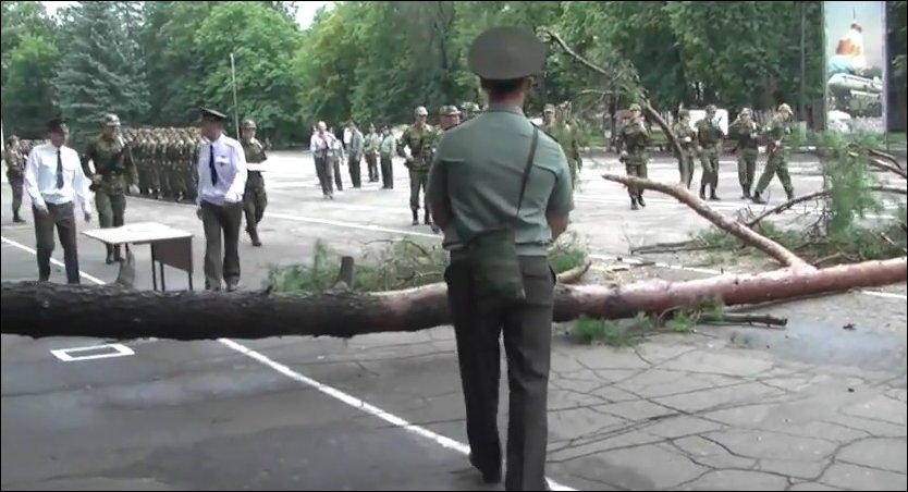 Дерево упало на плац во время присяги