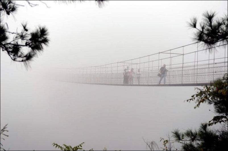 Прозрачный мост