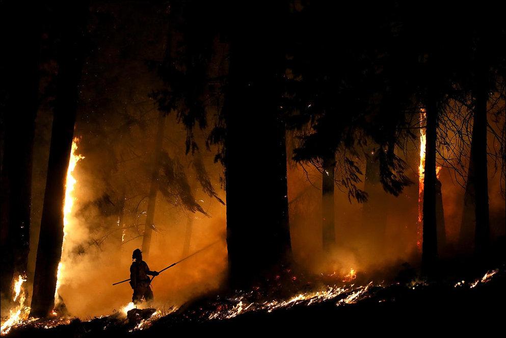 Лесной пожар в Калифорнии