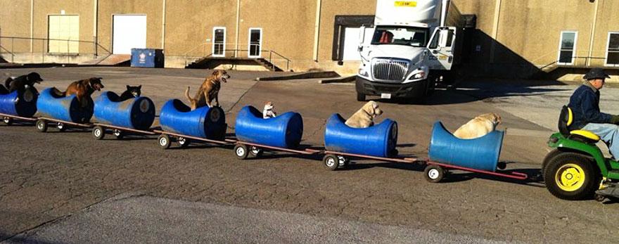 Поезд для собак