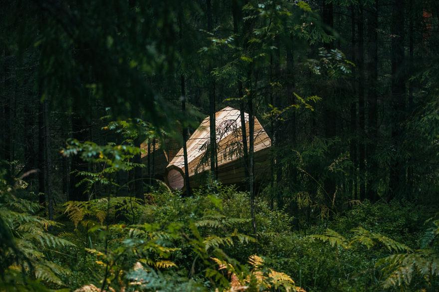 Деревянные мегафоны в лесу Эстонии