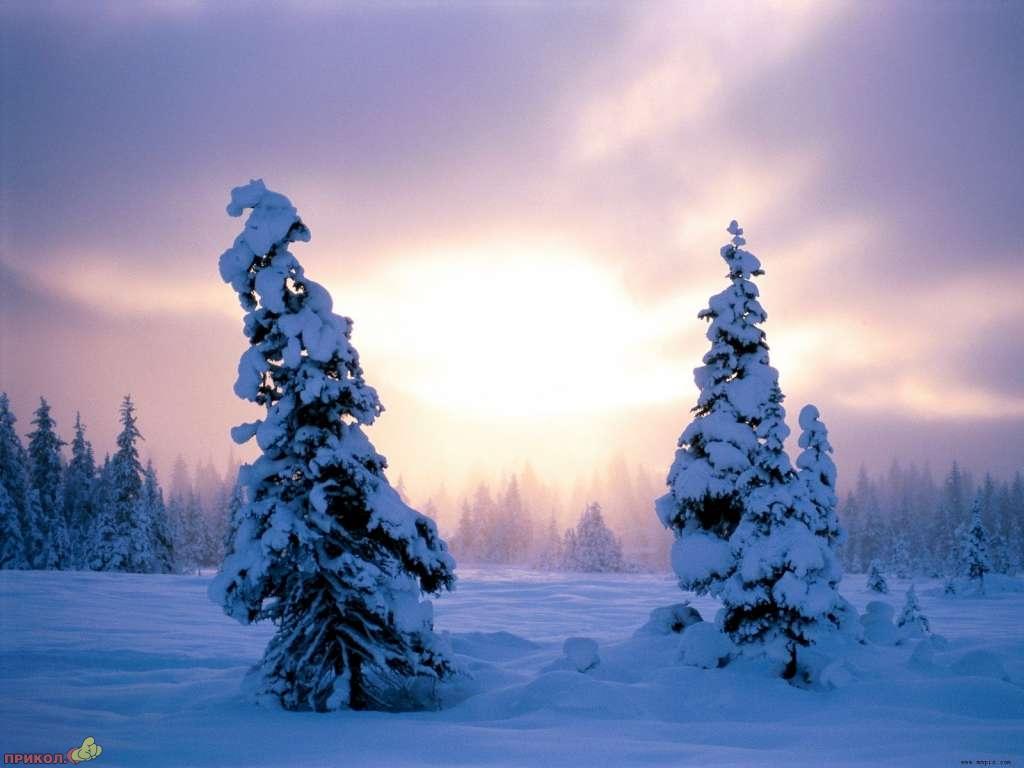 zima-05.jpg
