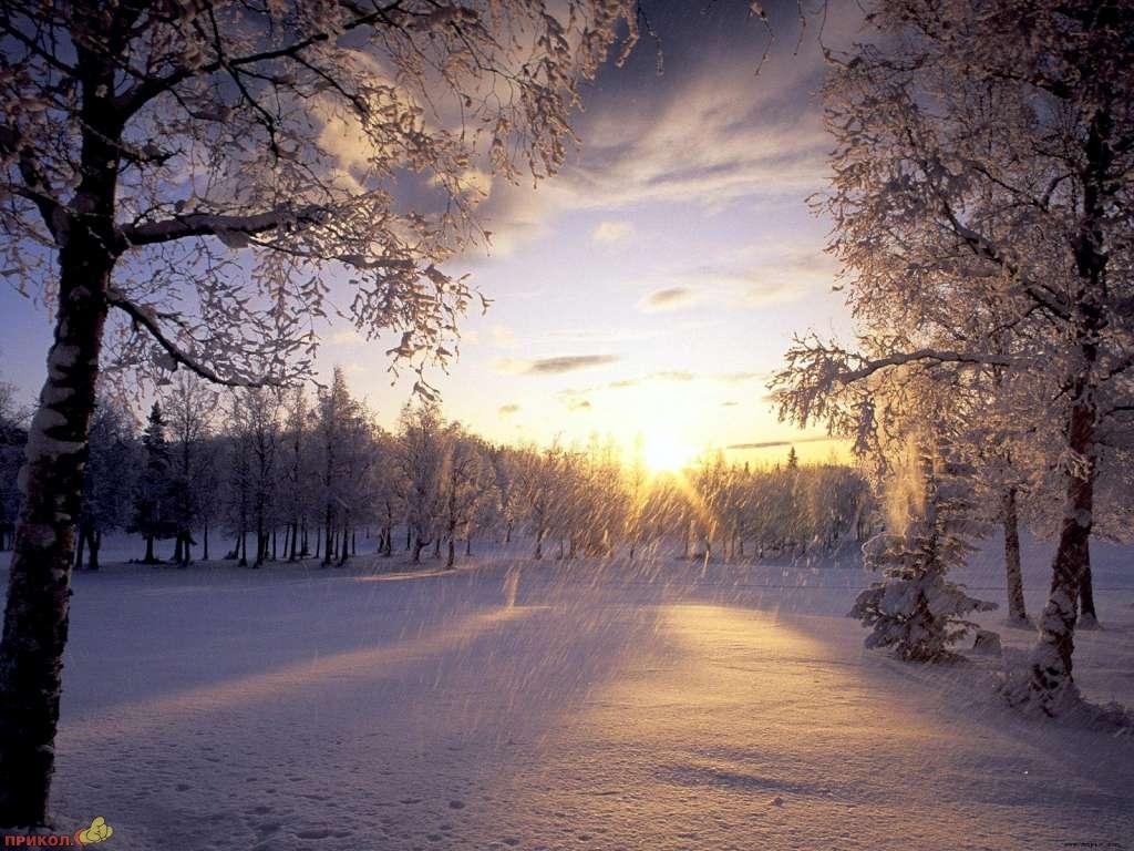 zima-07.jpg