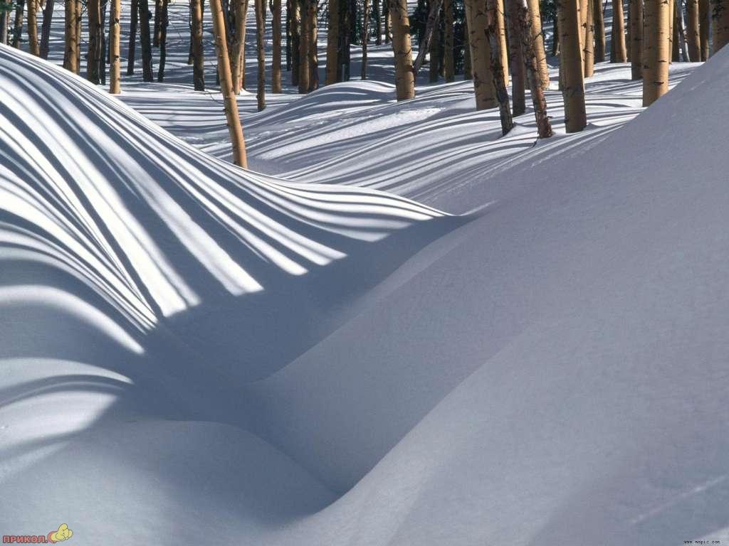 zima-09.jpg