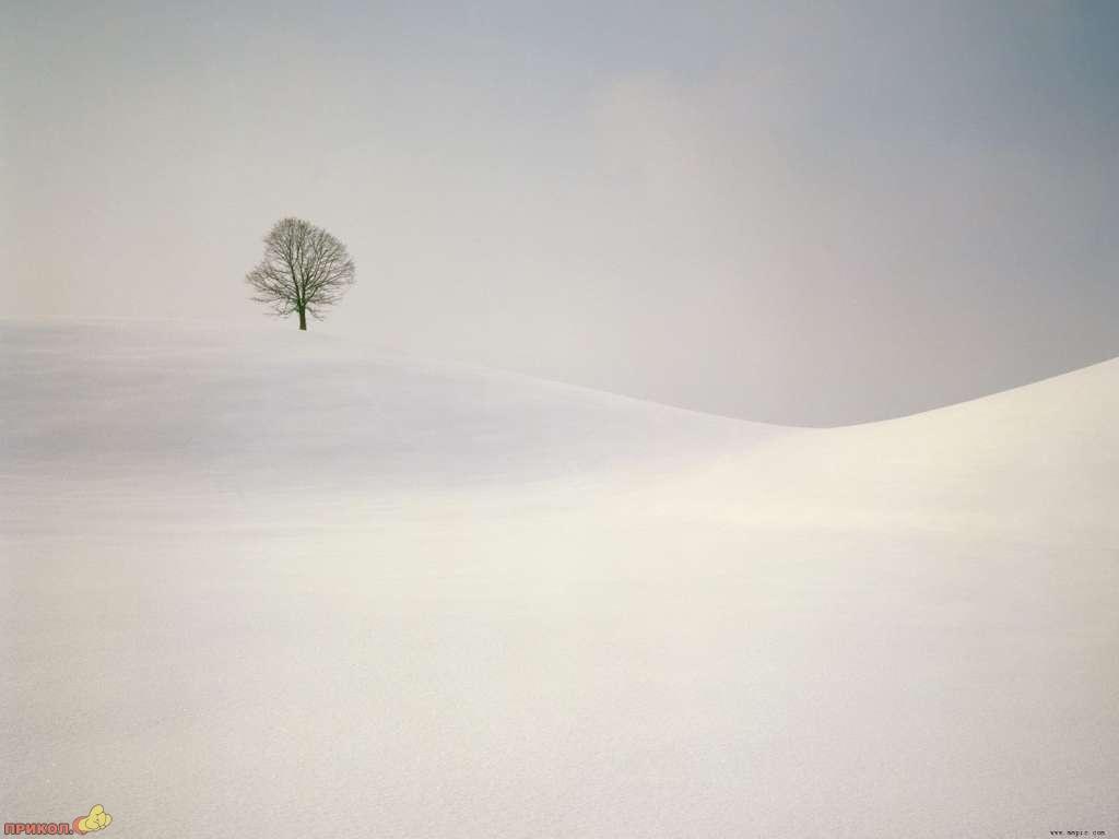 zima-11.jpg
