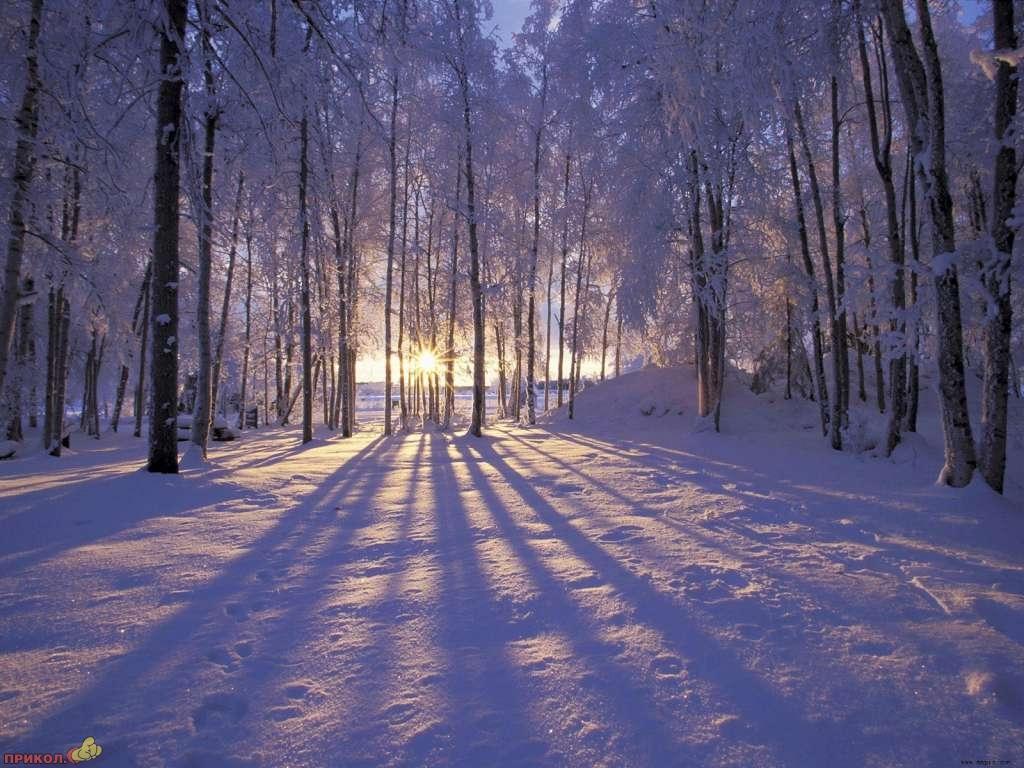 zima-19.jpg