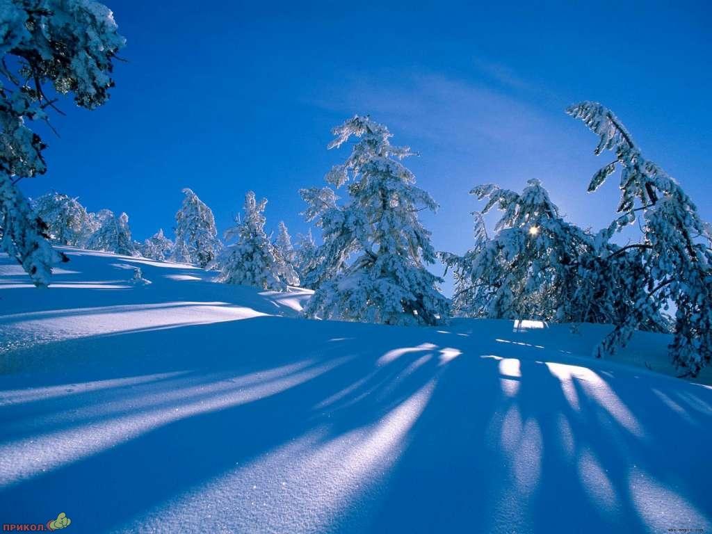 zima-22.jpg