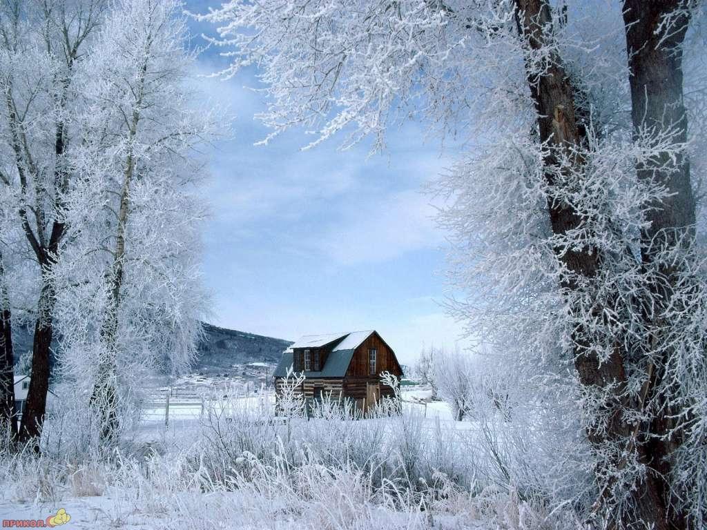 zima-27.jpg