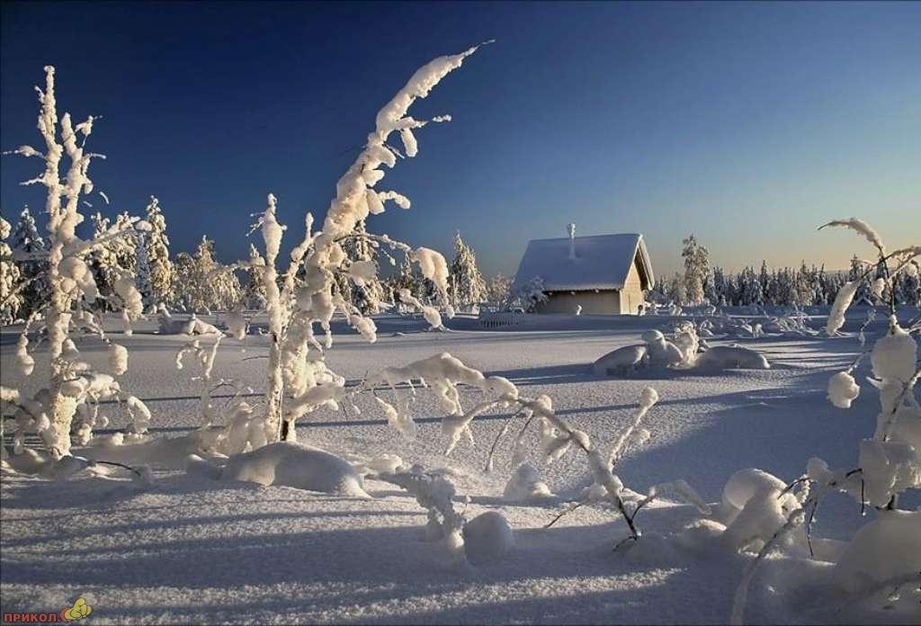 zima-33.jpg