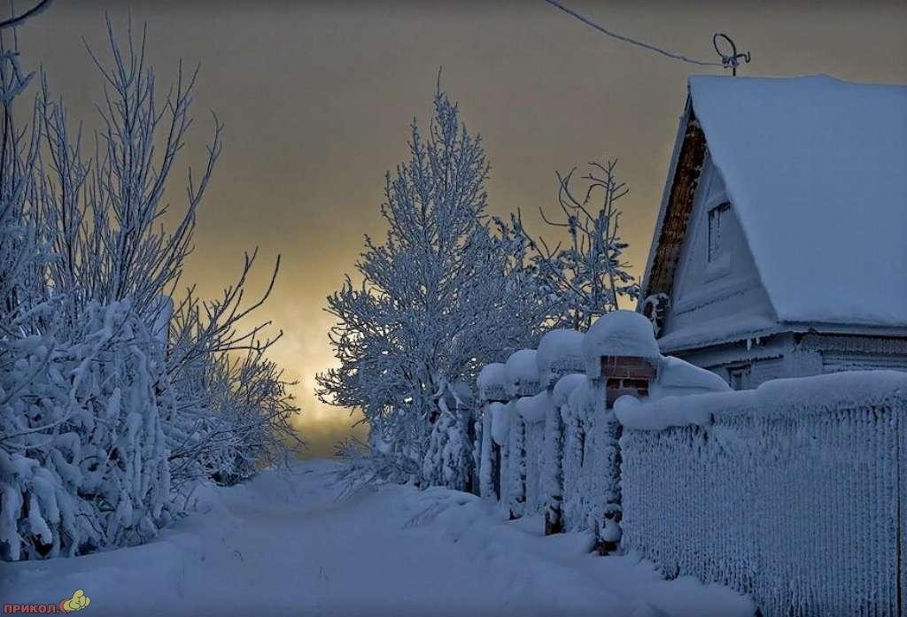 zima-34.jpg