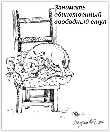 koshka-doma-01.jpg