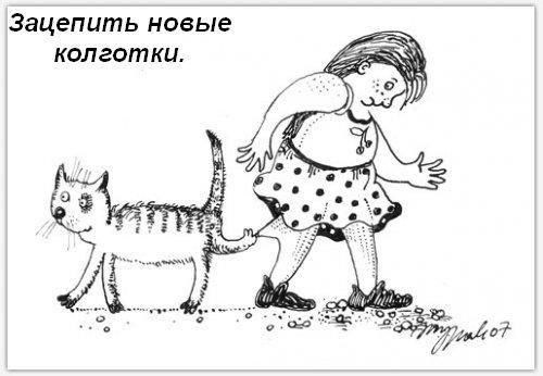 koshka-doma-05.jpg