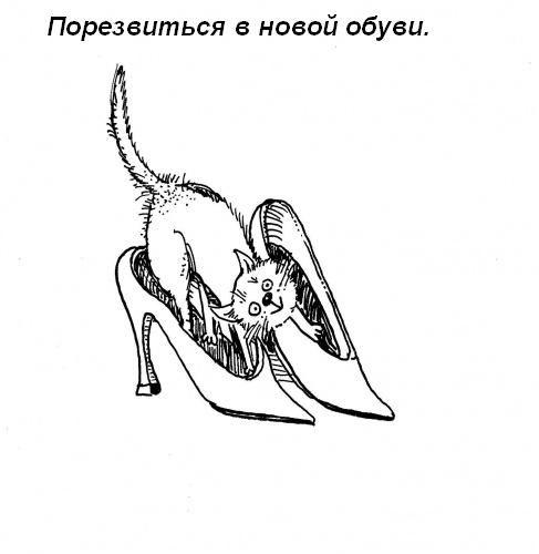 koshka-doma-11.jpg