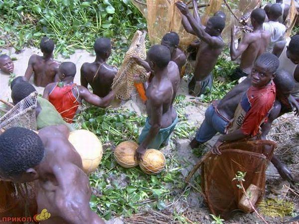 ribalka-v-nigerii-08.jpg