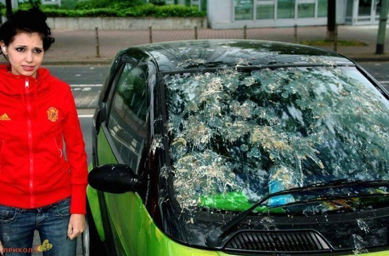 auto-crash-290309-36
